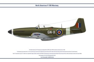 Mustang GB 249 Sqn 1 by WS-Clave