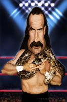 Jake The Snake Roberts by markdraws