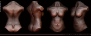 Female Torso by Abducted47