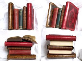 Stock Books stack 2 by E-DinaPhotoArt