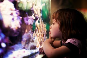 Finding Nemo. by Be-at