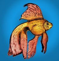 Colored Goldfish by Buzatron