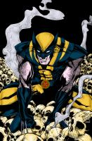 Wolverine On Skulls by pascal-verhoef