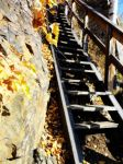 Stairs in autumn by VeinerT