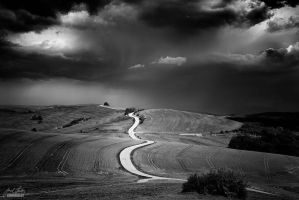 -On the road- by Janek-Sedlar