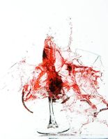 Exploded Wine by SplutPhoto