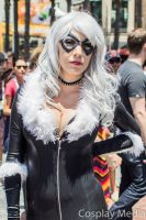 San Diego Comic-Con 2013 Black Cat by CosplayMedia
