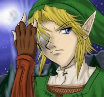Link -LoZ : TP by ZephX