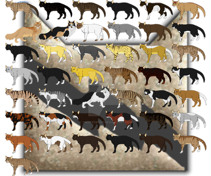 ThunderClan by Twistedfoot