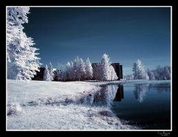 colour IR Canadore.. by rhyinsdad
