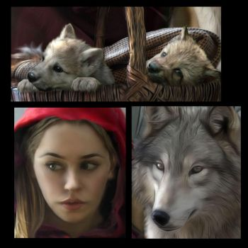 Enchantment Of the Wolf details by Tammara