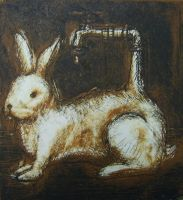 Hare by Brokenopenseed