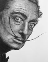 Salvador Dali II by Don-Berry