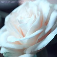 heartful by illusionality