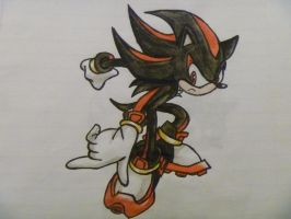 Shadow the Hedgehog by AngelSkyXXIV