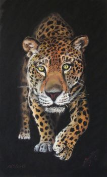 Animals Pastel - Feli 001 - Lleopard by arualmk