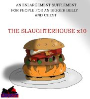 The Slaughterhouse x10 Ad by AlyTheWolfcat