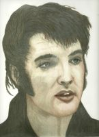 Elvis In Color by donna-j