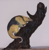 tamandua by melinaminotti