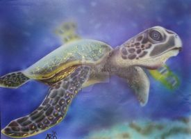 Turtle Turtle by TheDrawingdepot