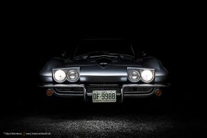 Sting Ray Face by AmericanMuscle