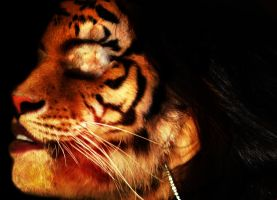 Tiger Girl 04 by agamate