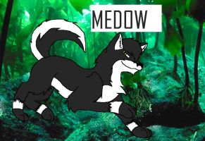 Medow by aquaheartthecat