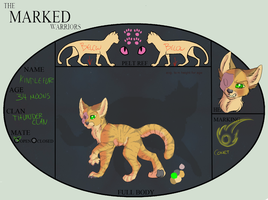 TMW || Kindlestar || ThunderClan Leader by slinqshots