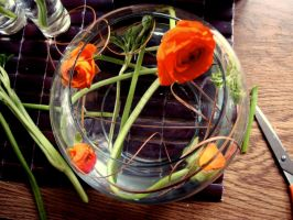 Ranunculus Sculpting by MoreThanNothing