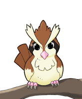 Featherweight the Pidgey by Gikamoth