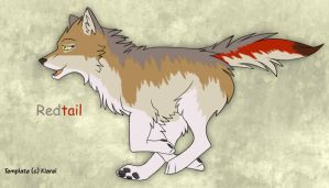 Wolf character- Redtail by Tephra76