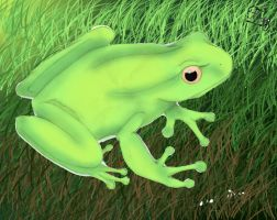 Frog Two by cuoredivetroo