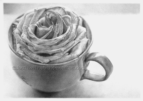 Cup of rose... by JustLikeThatxD