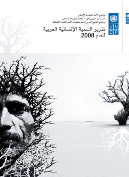 Cover for UNDP book 2008 by alamdi2