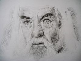 Gandalf finished..sort of by honey-vinegar