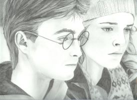 Harry and Hermione- finished by lcollins17