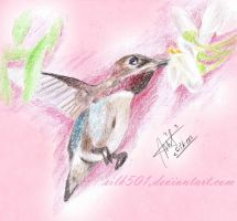 EAP June : Bee Hummingbird by silk501