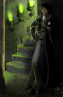 -The Heir of Slytherin- by Silvercresent11