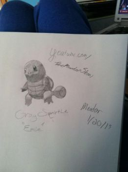 Grey Squirtle by mandi5000