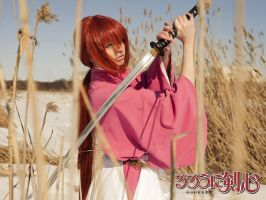 Rurouni Kenshin 22 by cat-shinta