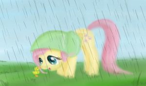 A rainy day by FlutterLuv