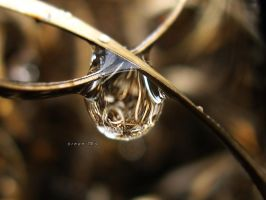 waste droplet 2 by sinanTR