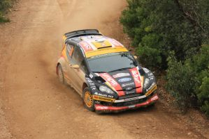 2014, Martin Prokop, Ford, Malhao, Portugal by F1PAM