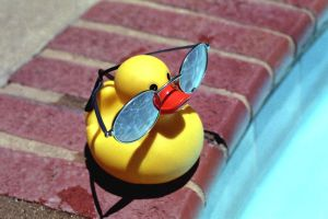 Mr. Ducky goes to the Pool by robert