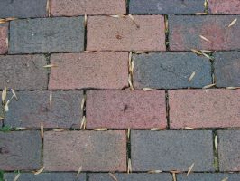 Brick Texture 4 by Freedom-Falling