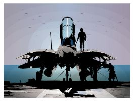 F-14 Tomcat by KamikasiNEO