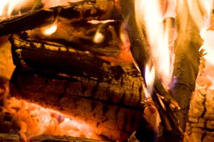Logs by aheria
