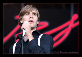 The Hives by metalpics