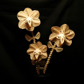 Custom Flowers for Laurie01 by ForgottenBoneyard
