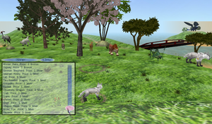 Last Moon (3D Animal Game) Pet and Skills NPCs by RakshaWw